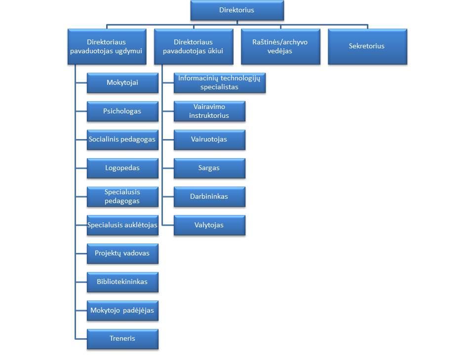 valdymo_struktura1